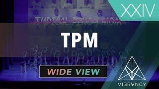 TPM Vibe XXIV 2019 [VIBRVNCY 4K]