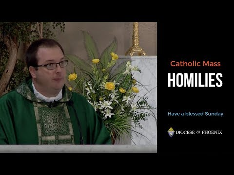 Fr. Nahrgang's Homily for July 29, 2018