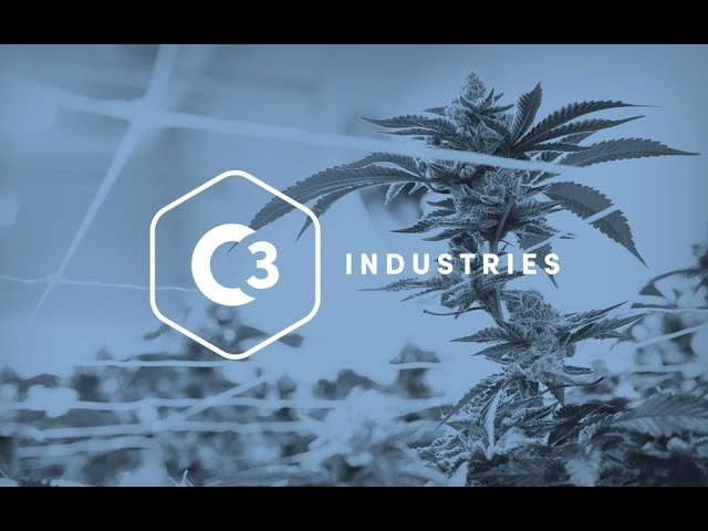 C3 Industries Joel Ruggiero Chief Horticulturist Describes His Cannabis Grow Operation
