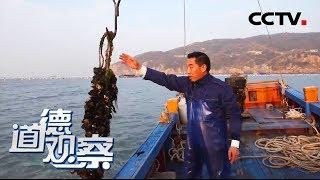 《道德观察(日播版)》 20200206 闪亮的名字 最美退役军人——杨玉斌| CCTV社会与法