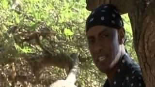 Dagim Mekonnen (Kilolee) - Gelloo - [Oromo Music]