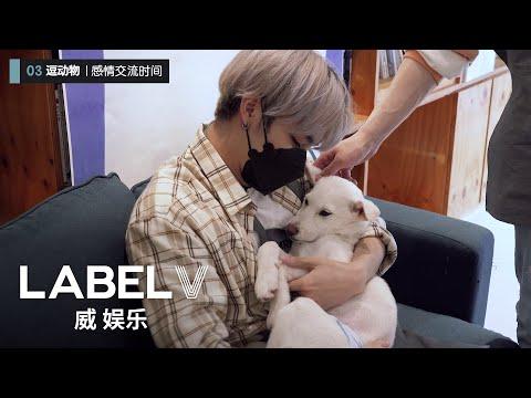 [WayV-ariety] 🐶🐱Visit The Animal Shelter | TEN X YANGYANG's Enjoy The Challenge! Ep.6