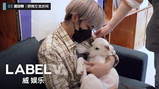 Download [WayV-ariety] 🐶🐱Visit The Animal Shelter | TEN X YANGYANG's Enjoy The Challenge! Ep.6