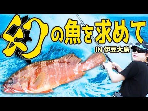 �伊豆大島海釣り】幻�魚を求��離島�や����!!大物を釣り上�よ����ら����展開�!?�MSSP / M.S.S Project】