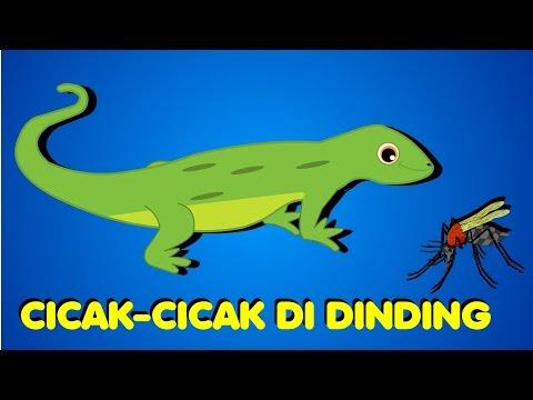 Cicak - Cicak Di Dinding +15 more | Kumpulan 22 minutes | Medley in Bahasa Indonesia
