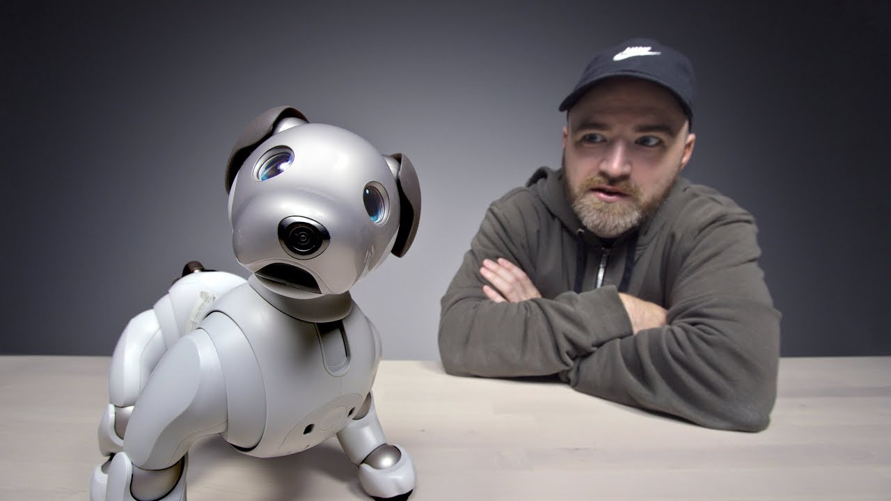 The $3000 Sony Aibo Robot Dog