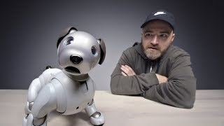 The $3000 Sony Aibo Robot Dog streaming