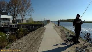Countryside Cycling Part 2/5 (Eemskanaal Noord Garmerwolde-Eemskanaal Noord Woltersum) 20-04-19