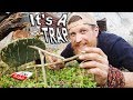 How To Make A Primitive Cactus Deadfall Figure 4 Trap / Day 27 Of 30 Day Survival Challenge  Texas
