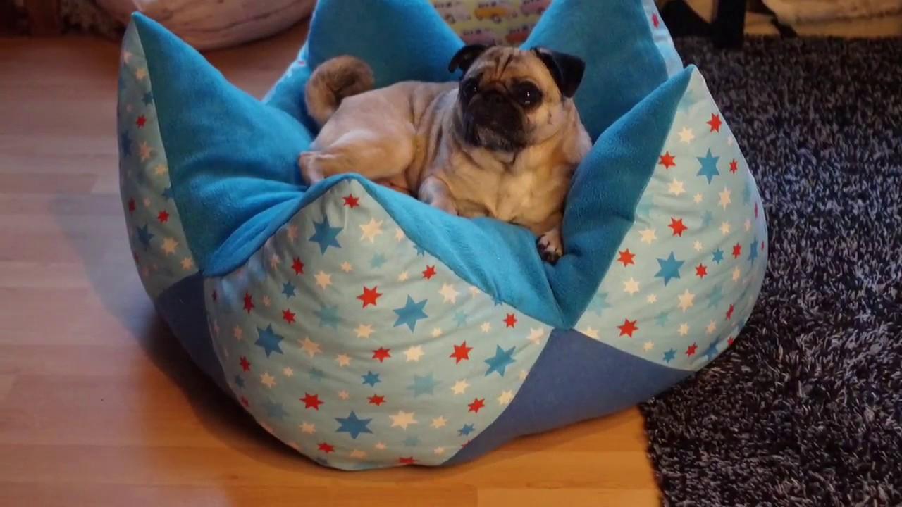 DIY Kronenkissen/Sternenkissen - Körbchen für Hunde nähen - YouTube