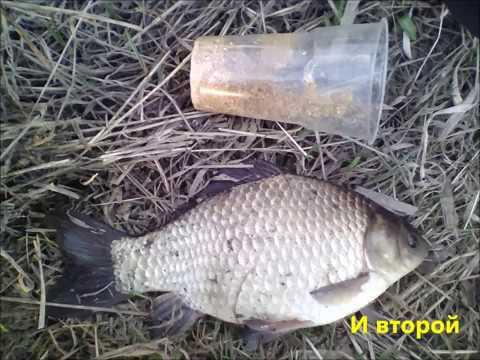 Рыбалка 2019.Весна. Открытая вода.Плотва., уклейка, карась.Ивановская область,  Кохма