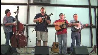 Kentucky 31 Bluegrass - Think of What You