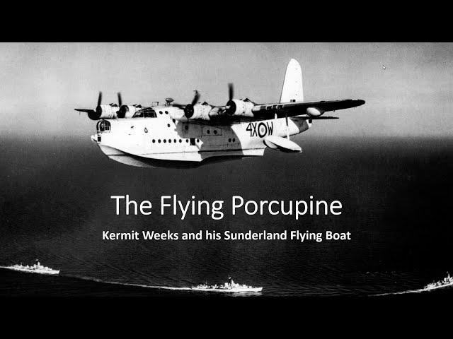 Sunderland Flying Porcupine Webinar Chat - Part 1
