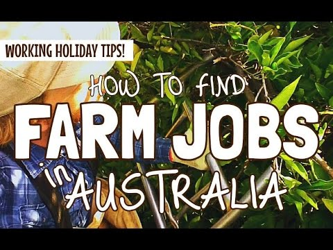 HOW TO FIND FARM WORK IN AUSTRALIA (The Easy Way!)