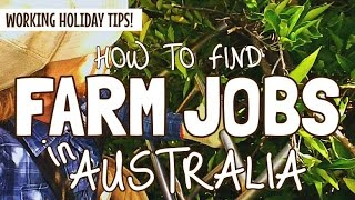 HOW TO FIND A FARM JOB IN AUSTRALIA (The Easy Way!)