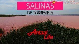 Испания: Время жить... SALINAS DE TORREVIEJA(Крупнейшее соляное озеро Европы Салинас де Торревьеха Всемирной организацией здравоохранения объявлено..., 2016-11-04T12:23:35.000Z)