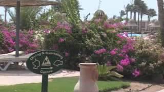 Egypt Holidays   Radisson SAS Hotel   Sharm, Egypt Holiday(, 2012-11-27T05:03:11.000Z)