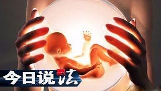 《今日说法》 送上门的儿子(下):代孕妈妈送了一个儿子来 留存在医院的胚胎却不翼而飞?20190615 | CCTV今日说法官方频道