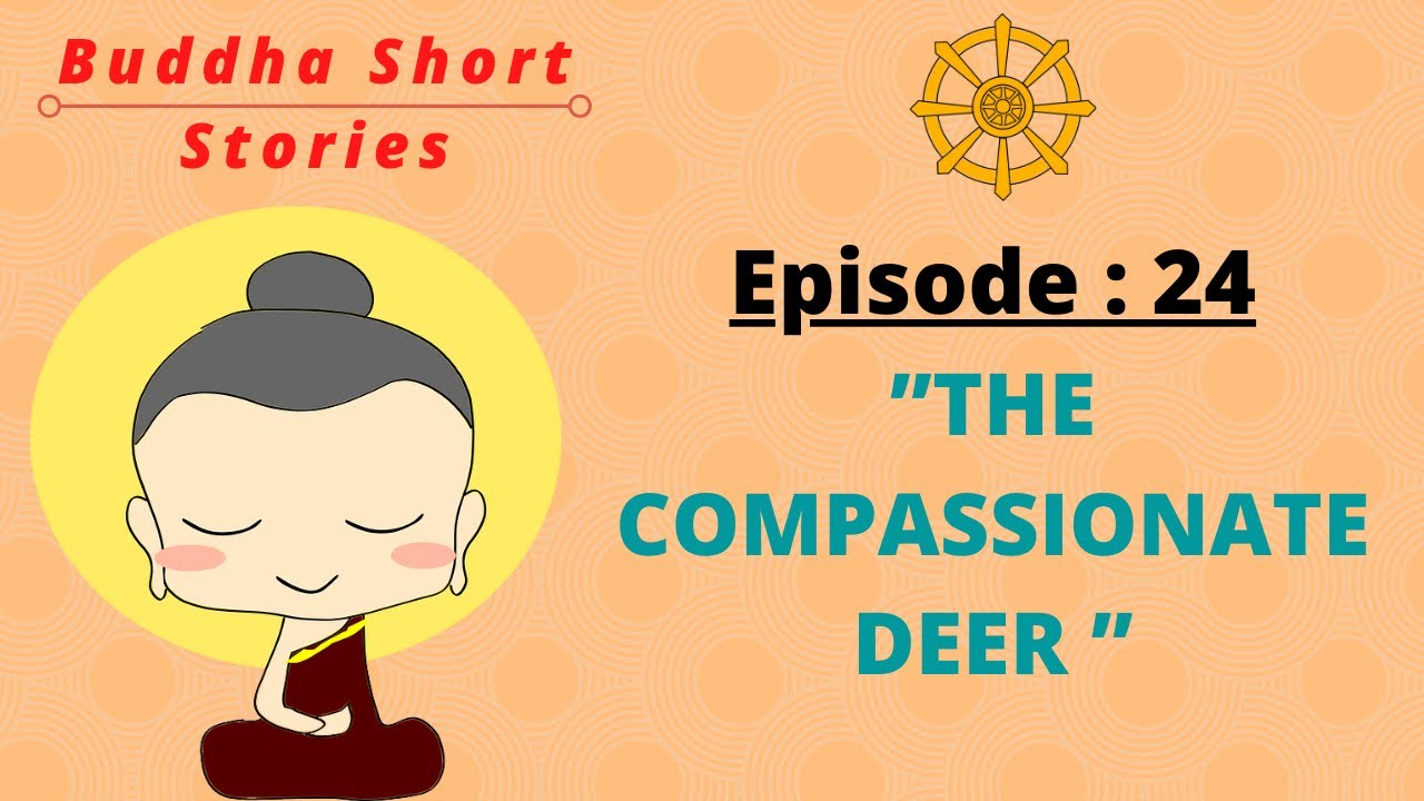 Gautama Buddha Interesting Short Stories In English || Episode 24. The Compassionate Deer