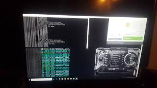 Nicehash Low Payrate GTX 1080, 1060, 1050