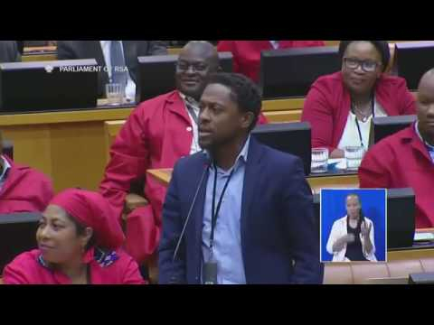 EFF Mbuyiseni Ndlozi accuses Ministers of playing morabaraba in Parliament