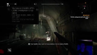 Dying Light #11 LIVE The End pt.2 with facecam