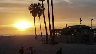sun venice beach