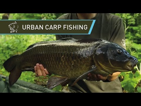 URBAN CARP FISHING On A London Park Lake With Alfie Russell - Nash 2014 Carp Fishing DVD Movie