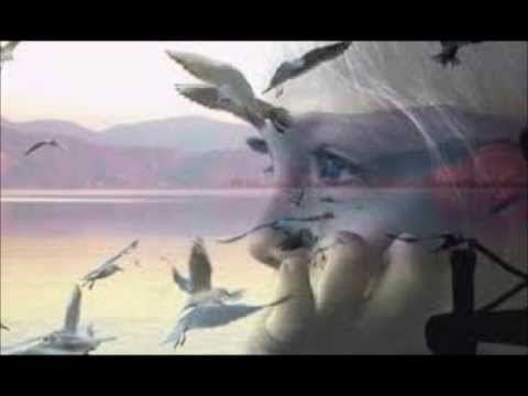 Emoções e Sentimentos - YouTube