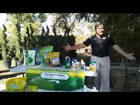 Keepin' it Green - Talking about FALL Lawncare needs