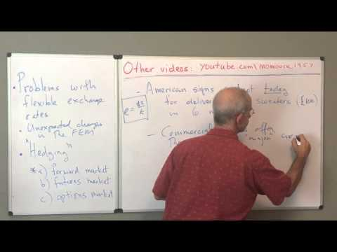 forward contracts and exchange rates basics 13