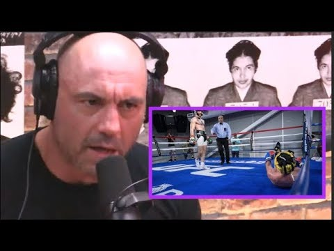 Joe Rogan Reacts to Conor McGregor vs Paulie Malignaggi Sparring Footage