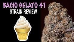 BACIO GELATO #41 STRAIN REVIEW