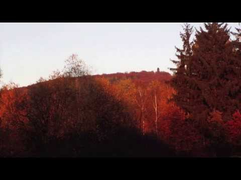 Jan Dismas Zelenka: Lamentatio I pro hebdomana sancta ZWV 53/Musica Antiqua Köln