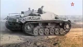 """Великая Отечественная война. Провал операции """"Цитадель"""""""