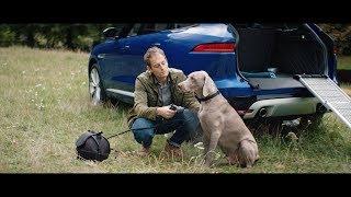 Jaguar Pet Products | Pampered Pooch