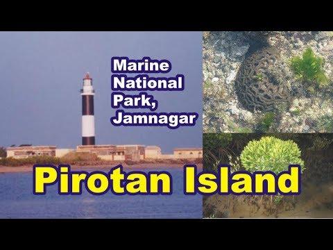 Pirotan Island - Marine National Park Jamnagar
