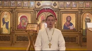 Манифест священника Степанова номер 1