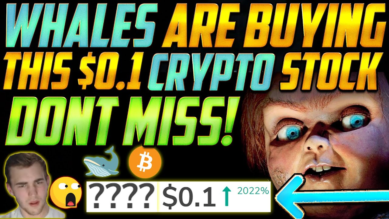 THIS $0.1 CRYPTO PENNY STOCK IS A MILLIONAIRE MAKER! We are up 2000% on this🚀