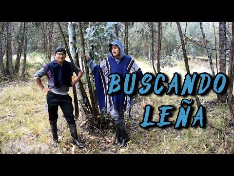 BUSCANDO LEÑA | John Valverde