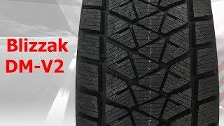 Bridgestone Blizzak DM-V2 - Фото видео обзор Отзывы