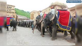 India Tour Packages : Golden Triangle Tour Packages : India Trip