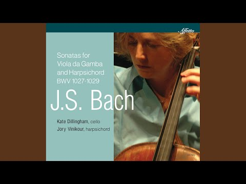 Viola da gamba Sonata in D Major, BWV 1028 (Arr. for Cello & Harpsichord) : III. Andante