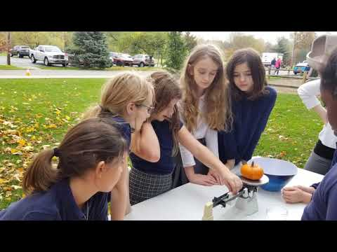 What is Outdoor Education by Stella Niagara Education Park