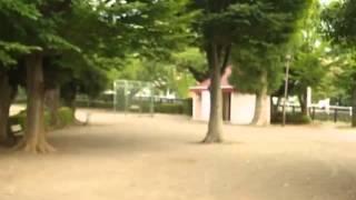宇佐美の郷戸公園、7月27日午前中 せっかく少し涼しかったのに セミだけ...