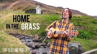 Home In The Grass (original) - Federico Borluzzi live in Budardulur - Trip to Iceland, part 27