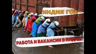 работа и вакансии в Гоа в Индии для русских в 2020 году