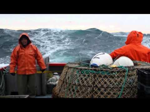 Pêcheries Shipek  (Ekuanitshit )