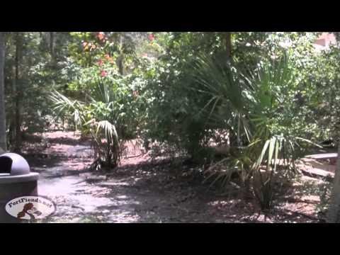 Fort wilderness full hookup loops