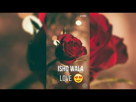 Ishq wala love status video